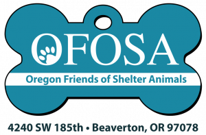 Want to get our amazing cat sitting services but don't have a cat? Don't worry! OFOSA has many cats and dogs available to become your new family member in your Portland home.