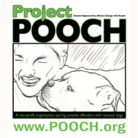 Love us and want to use our dog walking and dog sitting services but don't have a pet? Project POOCH is here to the rescue with plenty of adorable and loveable dogs waiting in foster homes to become your new furry family member today.