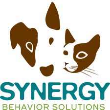 With Synergy Behavioral Solutions you can treat the mental health of your beloved pet. They have a strong focus on reactive dogs that have a hard time with dog walking on the Portland streets.