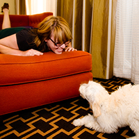 Dog Walkking, Pet Sitting, And Hotel Pet Sitting in Portland, Oregon! Cat sitting included!